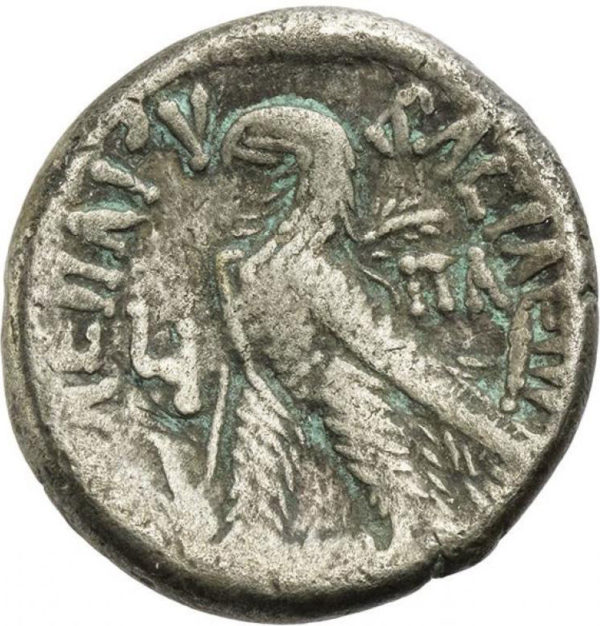 Ptolemaic Kingdom, Cleopatra VII Philopator, Tetradrachm - Rev