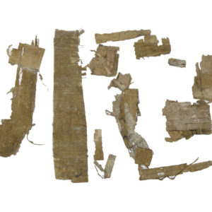 Egyptian papyrus fragments