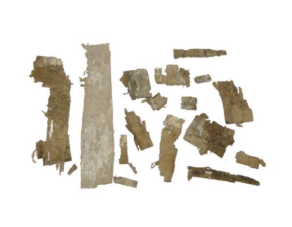 Egyptian papyrus fragments