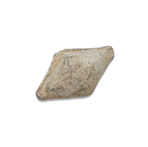 Roman slingshot 'Gnaeus Pompeius'