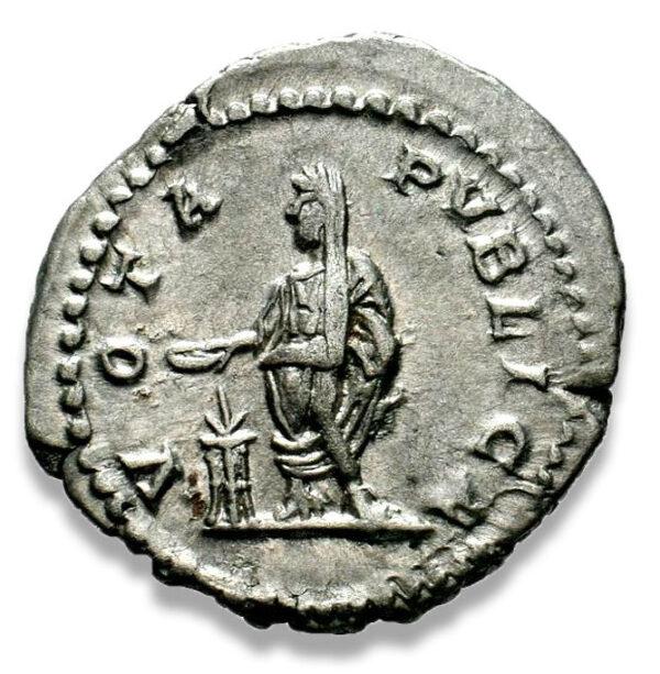 Roman Imperial, Geta, Denarius - Rev