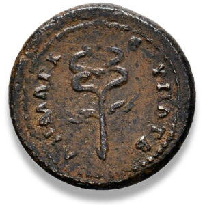 Roman Provincial, Trajan, AE - Rev